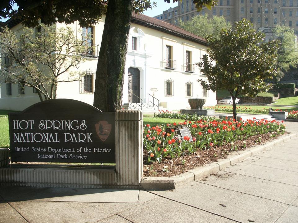 在床上红色的郁金香在温泉国家公园的前面