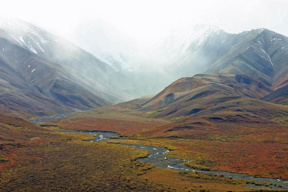 Tundra Wilderness Alaska