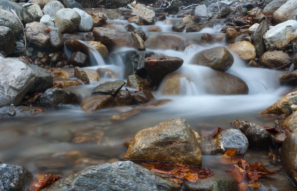Cascade d'eau de la forêt en plein air