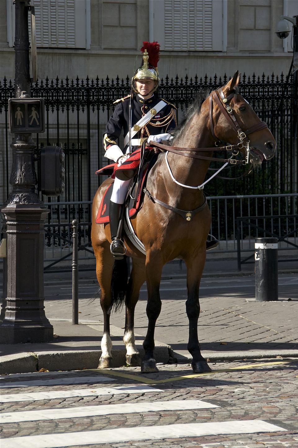 왕의 말, 파리, 프랑스 샤를 드골 광장을 지키고