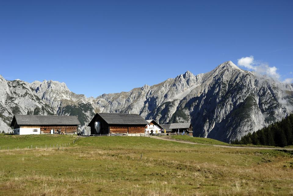 Walder Alm à Gnadenwald, Autriche