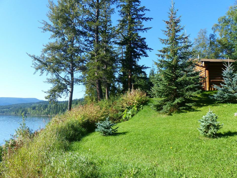 Canim湖不列顛哥倫比亞省加拿大