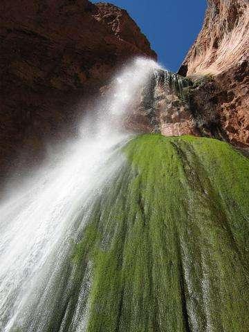 Descarga gratis la imagen de alta resolución - Falls cinta en el Parque Nacional del Gran Cañón