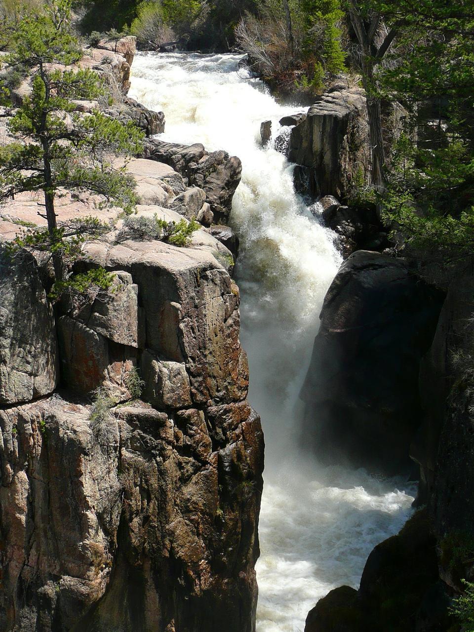 阿萨巴斯卡瀑布,贾斯珀国家公园,加拿大阿尔伯塔省