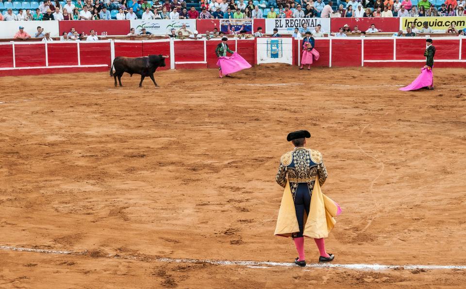 Corrida tradizionale - corrida in Spagna