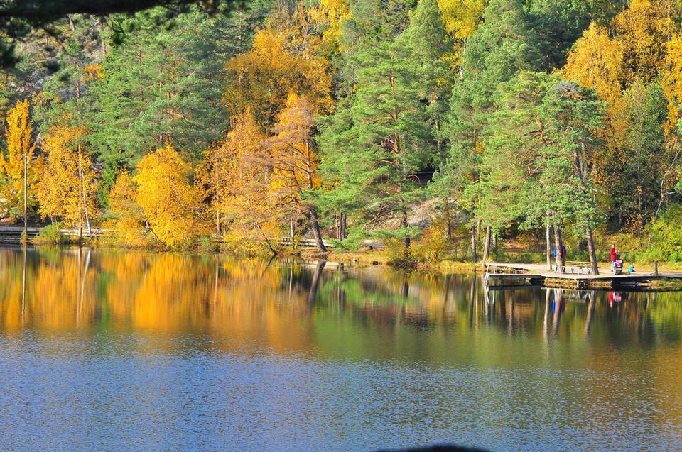 Lago Barn in autunno. Svezia