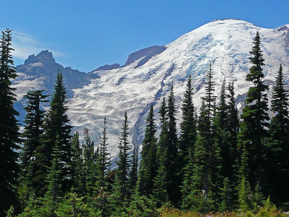 Mount Rainier National Park; Washington