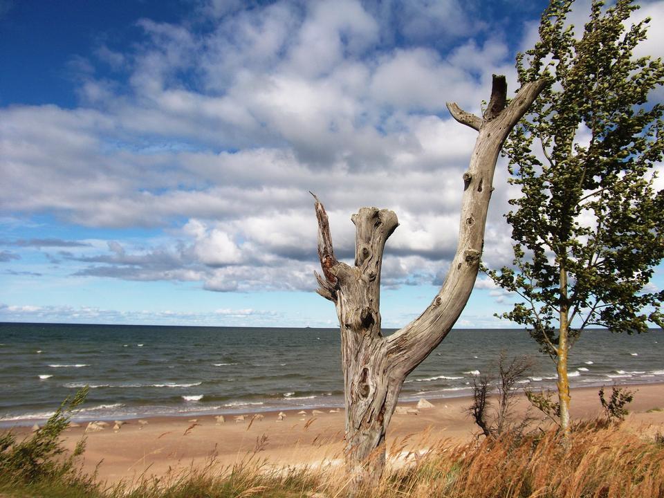 Mar Báltico en Kolka Cabo