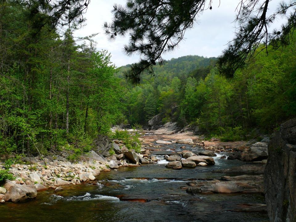 Wilson Creek in  Pisgah National Forest