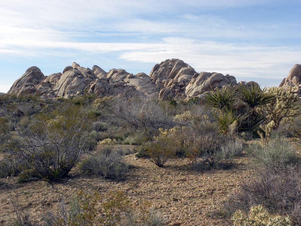 花岗岩山在莫哈韦沙漠,加利福尼亚州