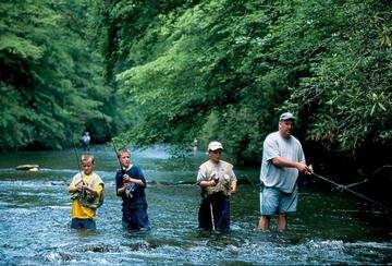 Descarga gratis la imagen de alta resolución - Río Davidson en el Bosque Nacional de Pisga
