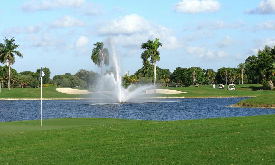 Campo da golf con palme tropicali e erba paesaggistico