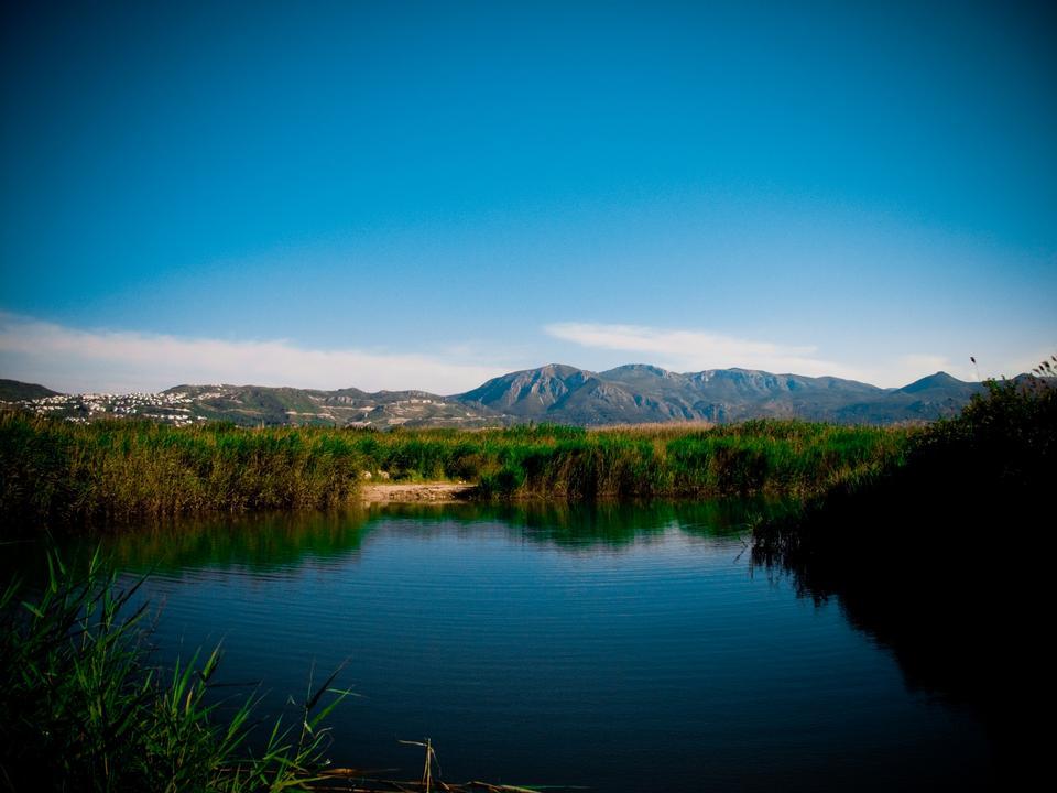 佩戈 - 奥利瓦沼泽自然保护区西班牙