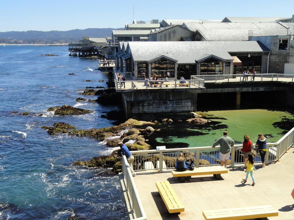 蒙特利湾水族馆,加利福尼亚州蒙特里