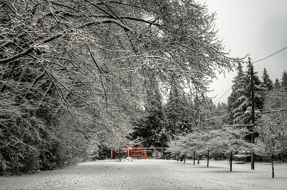 캐나다 밴쿠버에서 Murdo 프레이저 공원