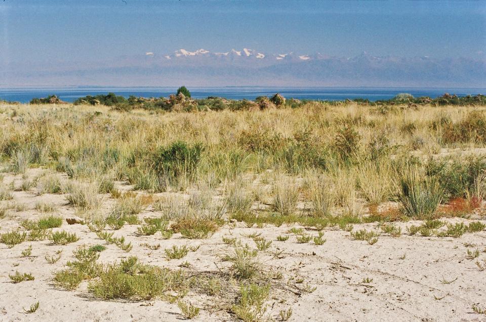 北の天山山脈でイシク·クル湖endorheic