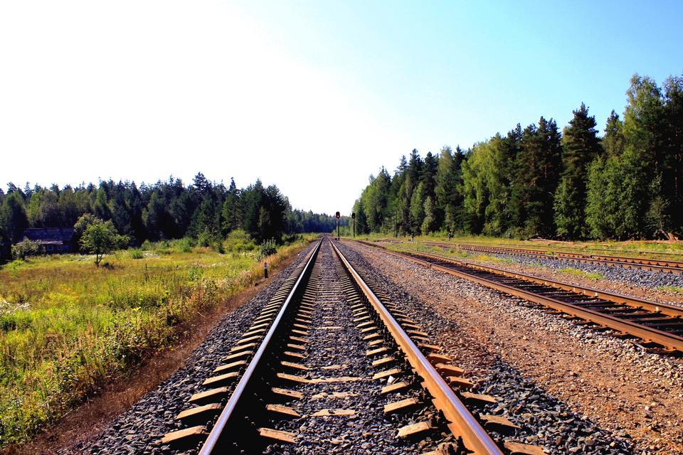 화창한 여름 하루에 철도