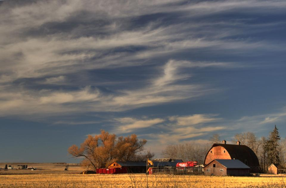 Beautiful fall afternoon in Alberta farm country