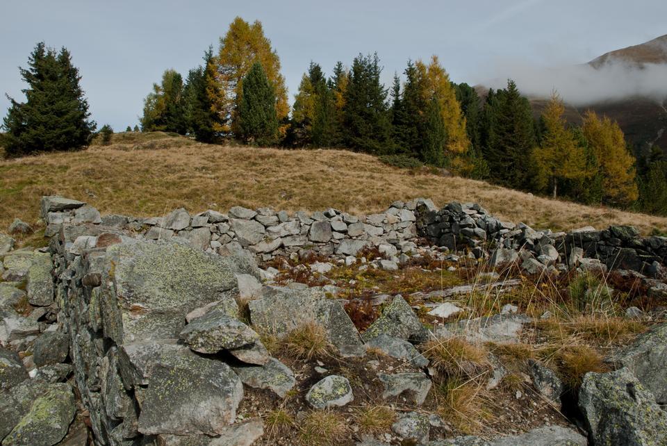 秋景与云和黄色的草