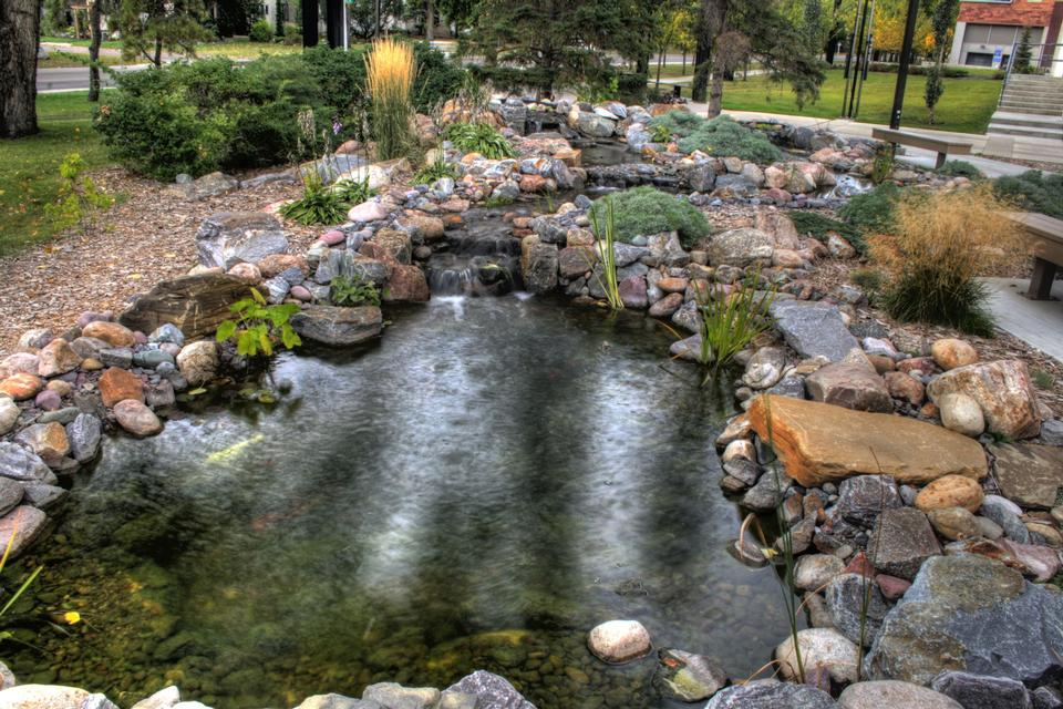 池在埃德蒙顿岩石园