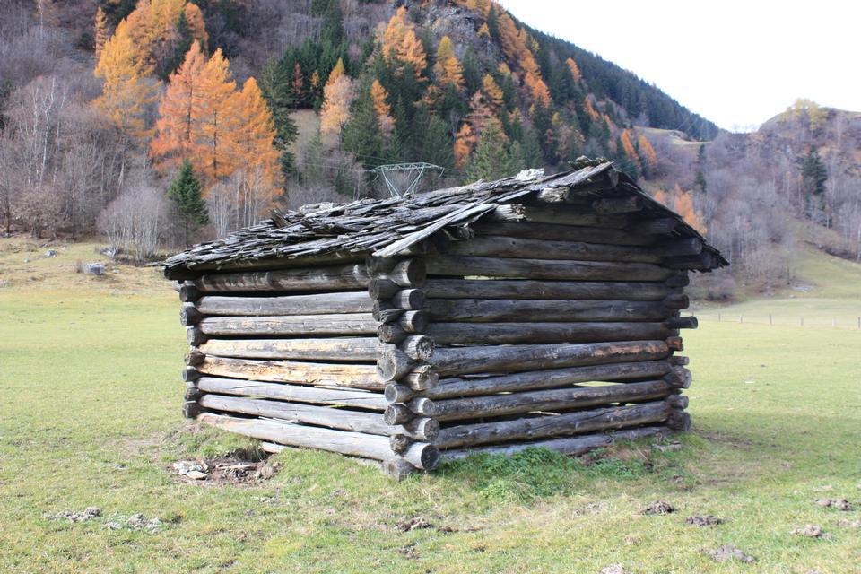 秋の古い納屋