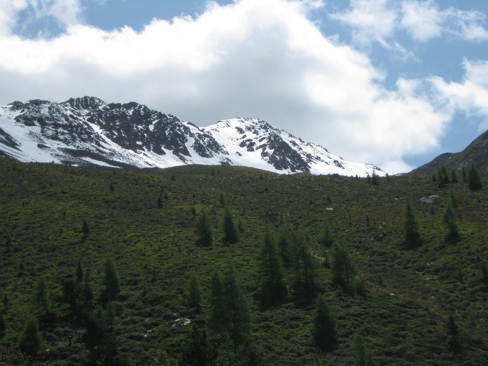 Hochgall山景观