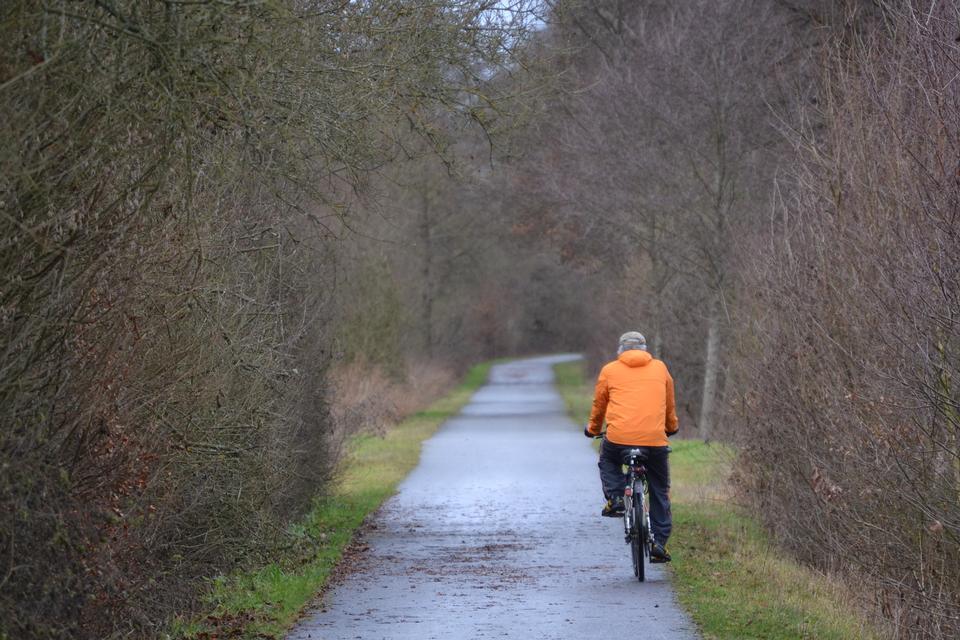 骑自行车在美丽的秋天骑自行车的足迹