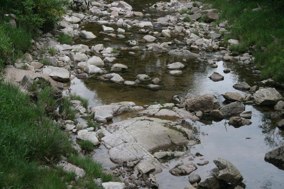 河川水のグラウンドで茶色の自然湿った岩