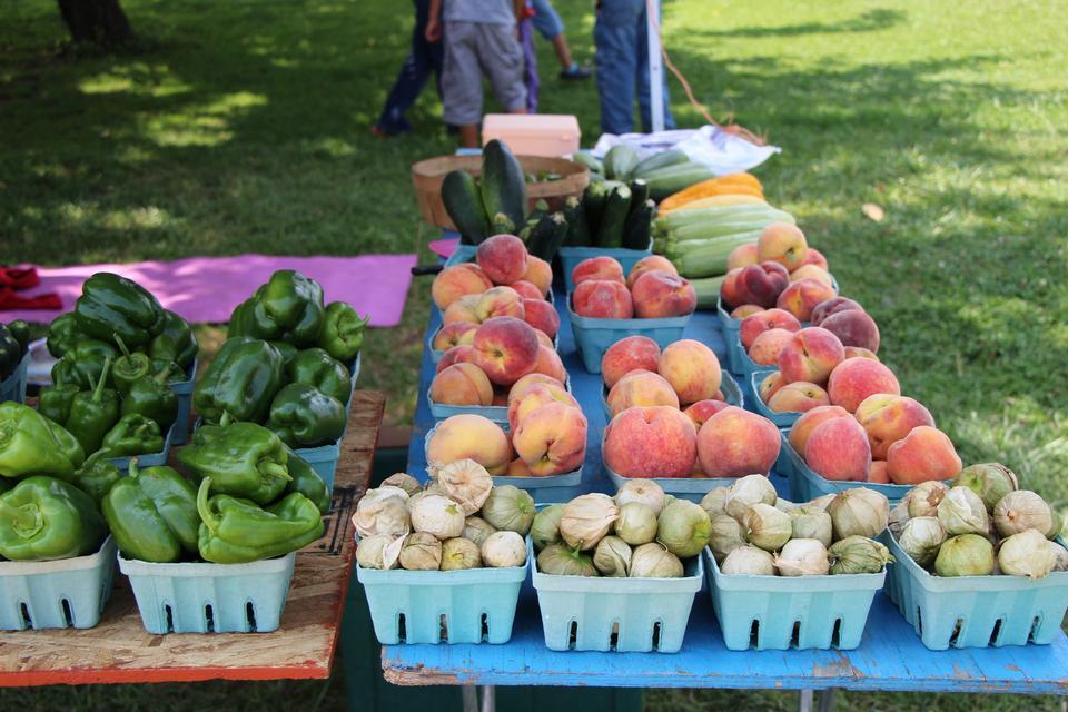 市場で新鮮な地元野菜