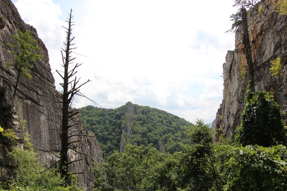 Nelson Rocks West Virginia