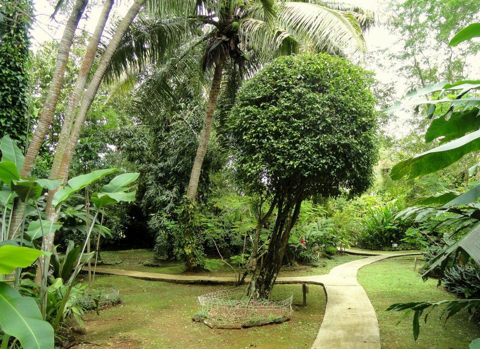 三协花园,关岛
