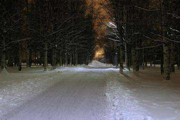 Descarga gratis la imagen de alta resolución - parque cubierto de nieve durante la noche