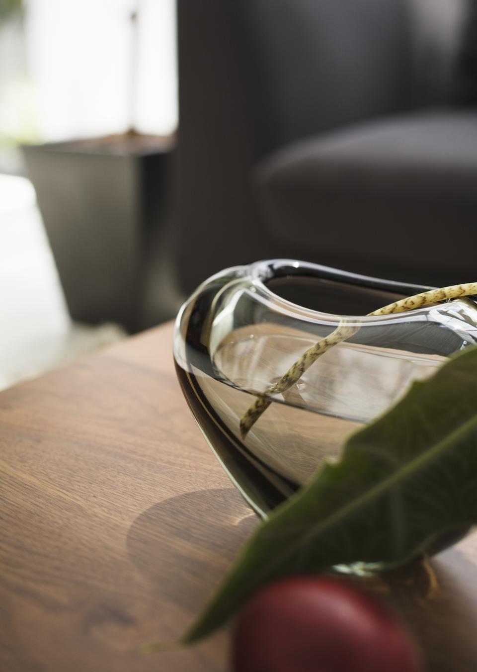 客厅用锅水生植物