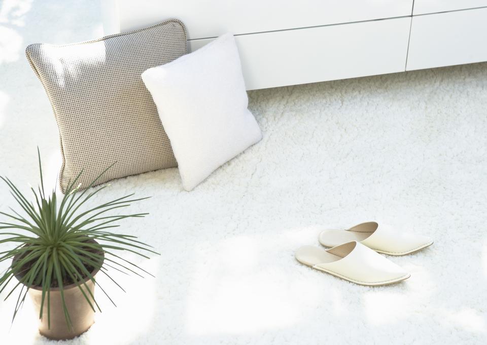 成分與溫暖的格子,拖鞋,枕頭和植物