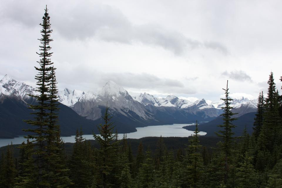 加拿大秃山贾斯珀国家公园
