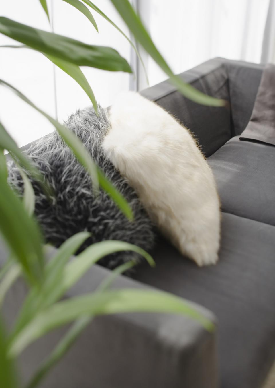 在客厅的休闲沙发装饰枕头