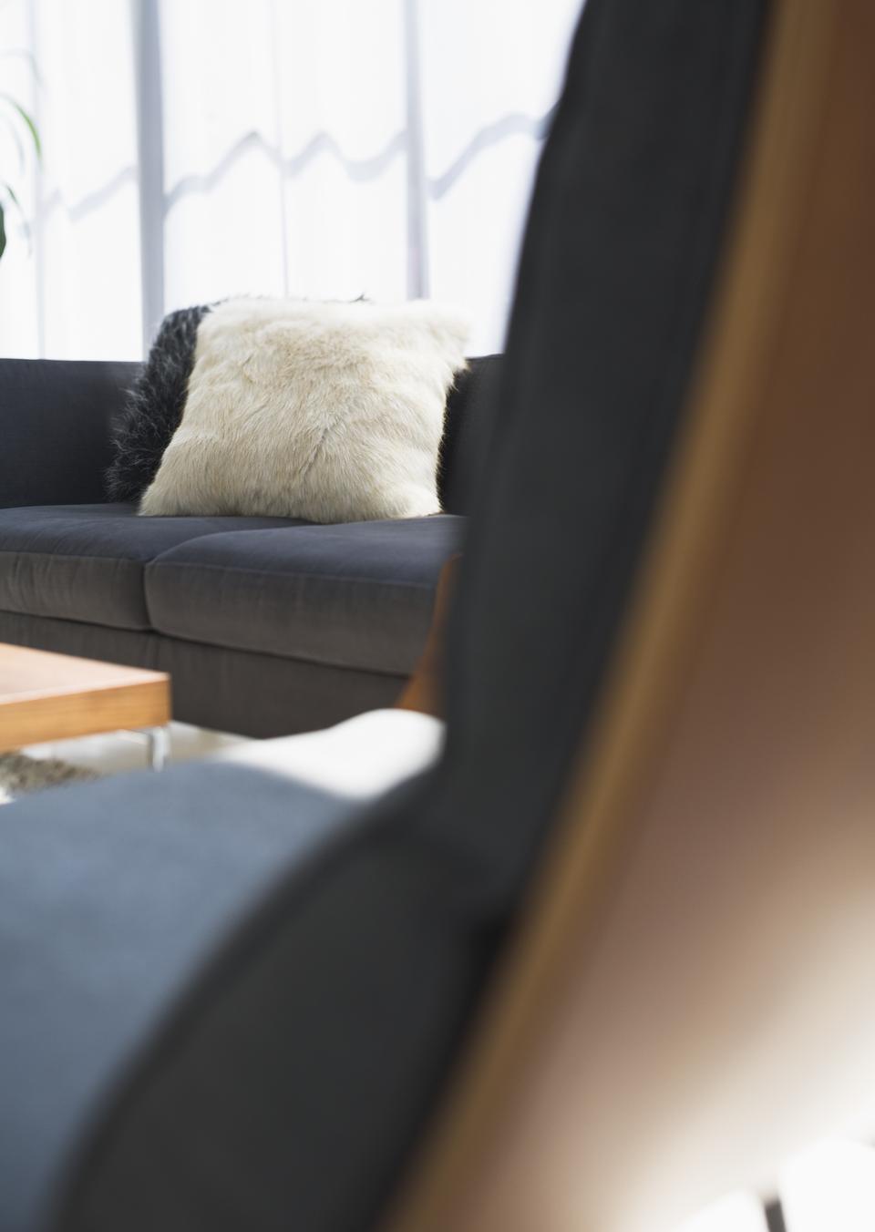 Decorative pillows on a casual sofa