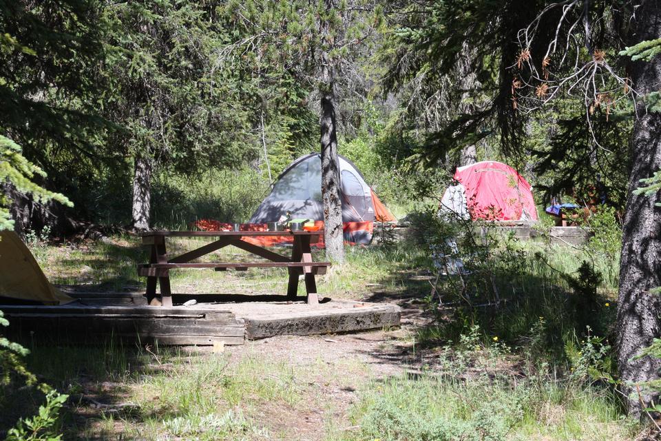 露营在Yoho国家公园,不列颠哥伦比亚省,加拿大