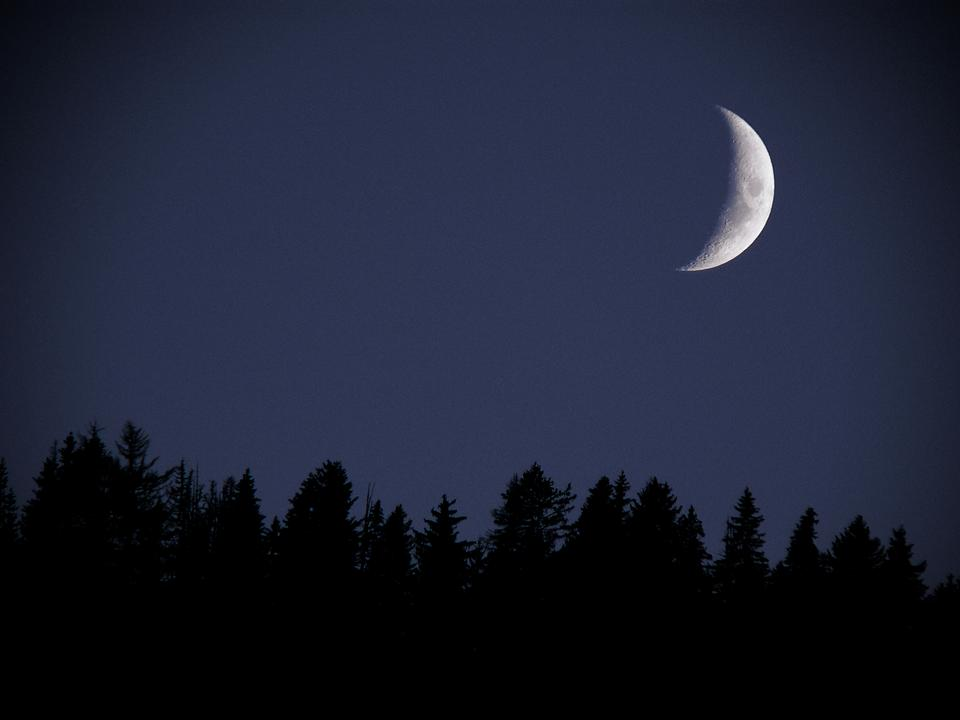 First Quarter Moon at Twilight, over clear blue sky