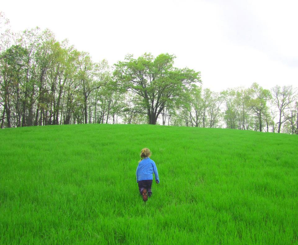 孩子在草地上