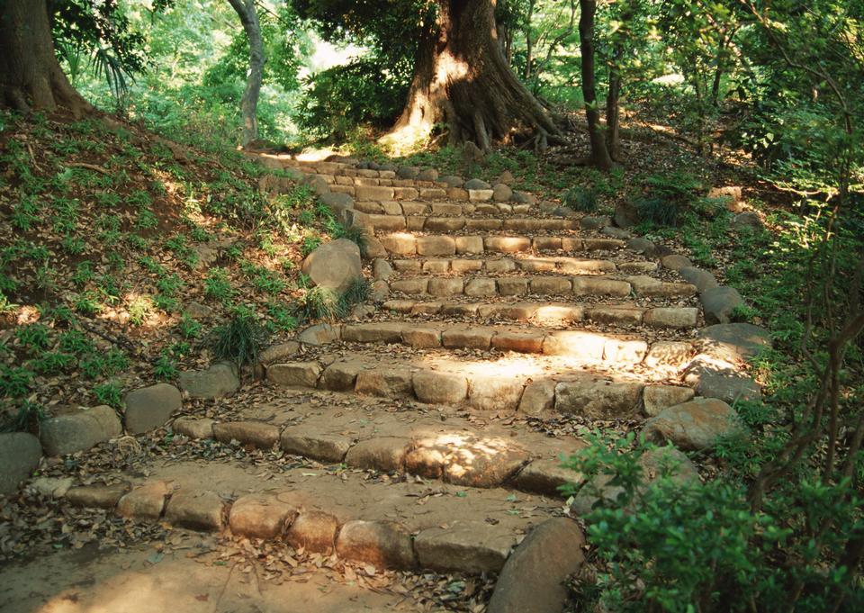 Some stone steps