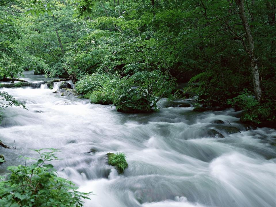 山涧水运行