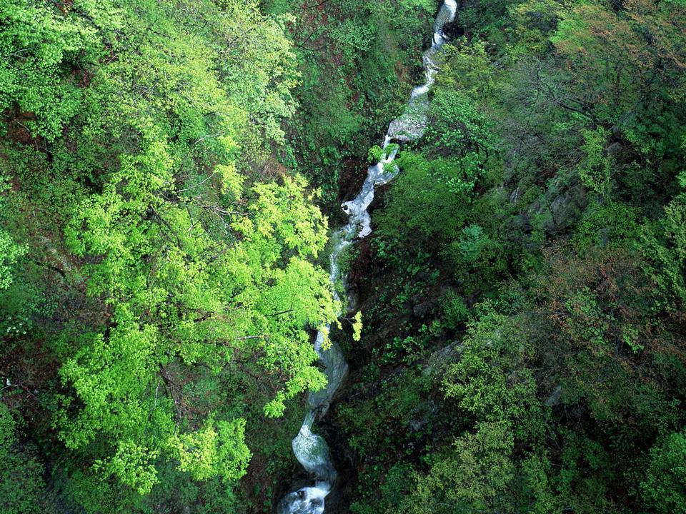 美麗的山脈河流景觀石頭小徑