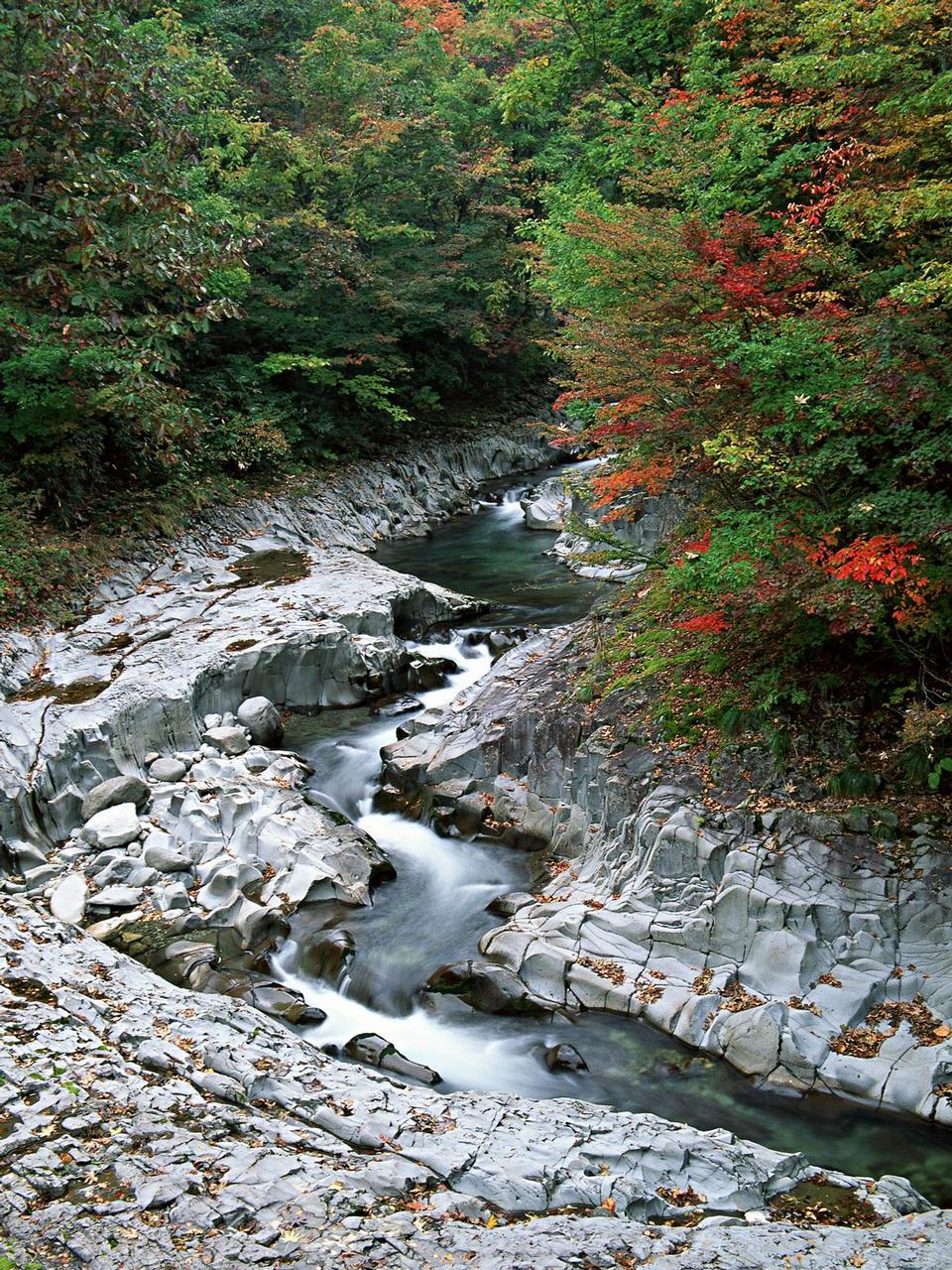 山区河流在阳光远足径