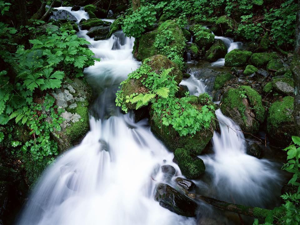 Run of mountain stream waterfalls