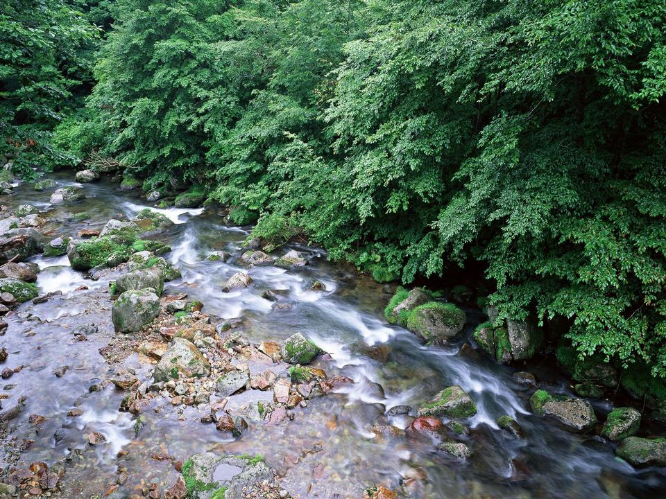 Stones and mountain river with small waterfall,