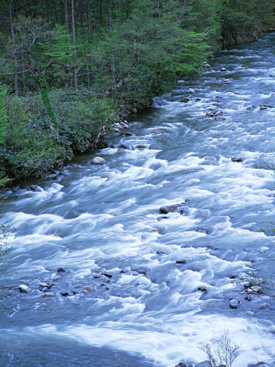 的流水流中的圖像