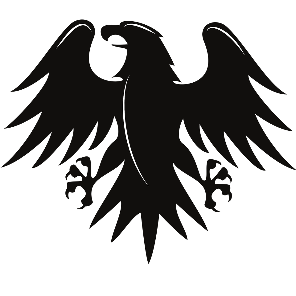 Stylized powerful black eagle silhouette with outspread wings
