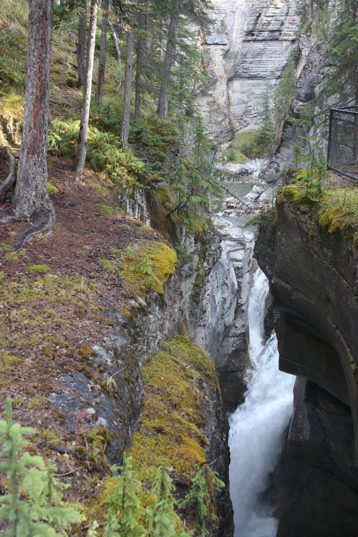 帕克岭古道在加拿大落基山脉