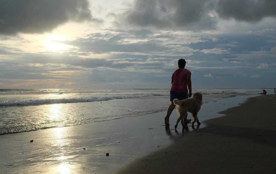 man with dog at sunset